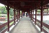 婺源景區-彩虹橋:1080410207.JPG