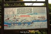 龍虎山景區-仙水岩:1080412201.JPG