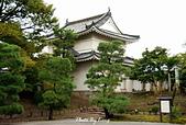 京都元離宮二條城:1081026010.JPG
