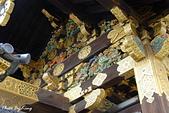 京都元離宮二條城:1081026019.JPG