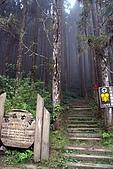 杉林溪森林遊樂區:16杉林溪.JPG