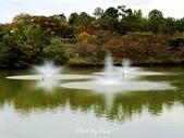 大阪花博紀念公園鶴見綠地:1081023008.jpg