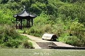 龍虎山景區-仙水岩:1080412233.JPG