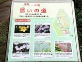 大阪萬博紀念公園:1081025014.jpg