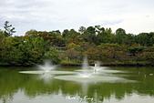 大阪花博紀念公園鶴見綠地:1081023007.JPG