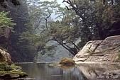 杉林溪森林遊樂區:13杉林溪.JPG