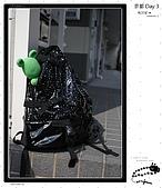 【2009 關西】Day 3 --- もう一日京都に行こう:_MG_0001.jpg