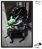 【2009 關西】Day 3 --- もう一日京都に行こう:_MG_0017.jpg