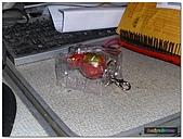 代工作品(1)-2010/05~2011/08(頁數):鋼鐵人鑰匙圈 (2).JPG