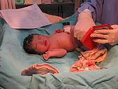97/11/3 寶貝女兒出生囉:IMG_0012.jpg