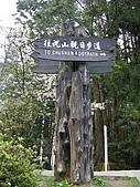 970405~06阿里山賞櫻之旅:往祝山觀日步道