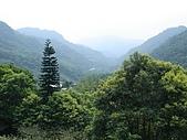 970809大板根森林遊樂區:瞭望台的景色