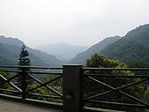 970809大板根森林遊樂區:瞭望台