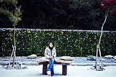 之前的照片:92年12月12/13日(五,六) 武陵農場