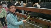 105以後照片:花壇 大山農場1457785712540.jpg