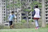 105以後照片:5333文心森林公園.jpg