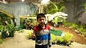 105以後照片:白堊紀恐龍特展1457178975426.jpg