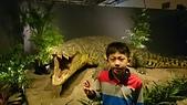 105以後照片:白堊紀恐龍特展1457178978693.jpg