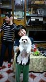 105以後照片:二伯家的狗.jpg