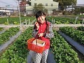 109相簿:1090119採草莓_200119_0003.jpg