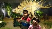 105以後照片:白堊紀恐龍特展1457178970198.jpg