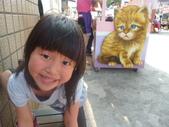 103.03.29以後的相簿:雲林 頂溪社區~屋頂上的貓