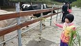 105以後照片:花壇 大山農場1457785690973.jpg
