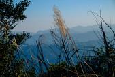 山與水:DSCF3507.jpg