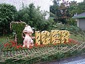 2010動物園路跑賽:PC262983.JPG