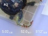20210101_練跑紀錄照片:RQ_IMAGE_20210721_085408.jpg