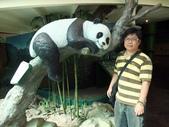 台北動物園:1487446621.jpg
