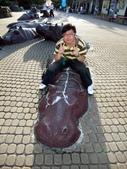 台北動物園:1487446624.jpg