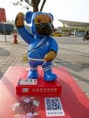 高雄泰迪熊:4.JPG