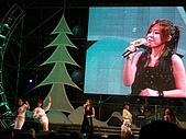 愛河聖誕夜:目不轉睛的舞蹈