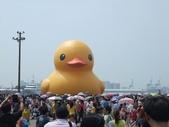 黃色小鴨:黃色小鴨 004.jpg