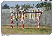 2009 屏東熱帶農業博覽會:DSC_0393.jpg