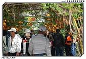 2009 屏東熱帶農業博覽會:DSC_0336.jpg