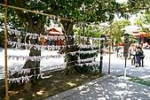 20090221 沖繩花漾旅遊四日優質版(早去晚回):020.jpg
