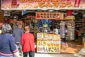 20090221 沖繩花漾旅遊四日優質版(早去晚回):079.jpg