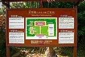 20090221 沖繩花漾旅遊四日優質版(早去晚回):025.jpg