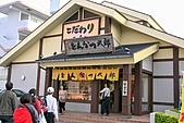 20090221 沖繩花漾旅遊四日優質版(早去晚回):087.jpg