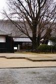 20120116A 早餐‧雨中熊本城:『熊本城』- 銀杏樹
