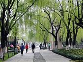 20100331 海天佛國普陀山杭州印象西湖五天之旅第五天相片集:007 錢王祠