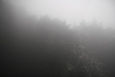 20091129 安徽池洲九華山地藏王菩薩朝聖4天之旅(早去午回))第二天:137 百歲宮纜車