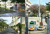20090223 沖繩花漾旅遊四日優質版(早去晚回):006.jpg