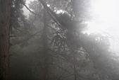 20091129 安徽池洲九華山地藏王菩薩朝聖4天之旅(早去午回))第二天:140 百歲宮纜車