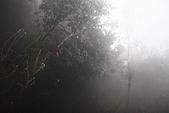 20091129 安徽池洲九華山地藏王菩薩朝聖4天之旅(早去午回))第二天:142 百歲宮纜車