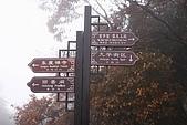 20091129 安徽池洲九華山地藏王菩薩朝聖4天之旅(早去午回))第二天:184 指標