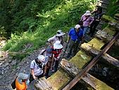 太平山之旅:DSC00913.JPG