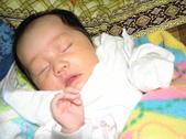 2008前半年全家生活照:1342320415.jpg